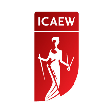 ICAEW_partners